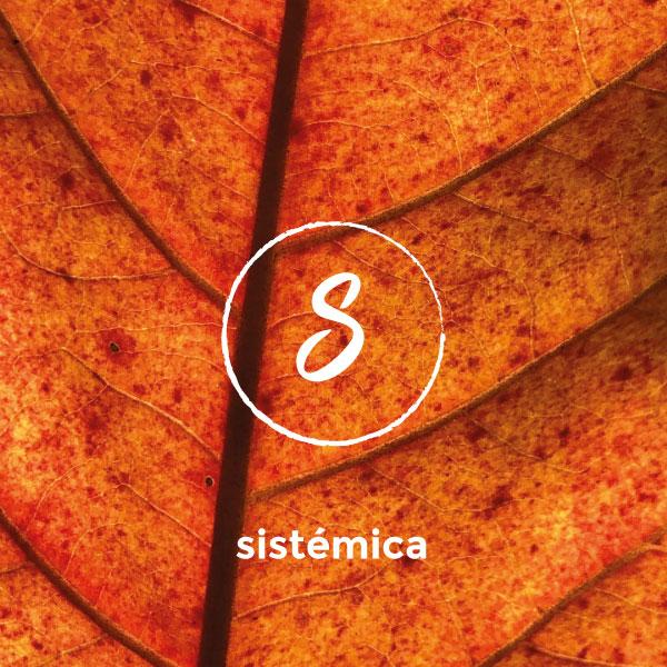 sistemica1