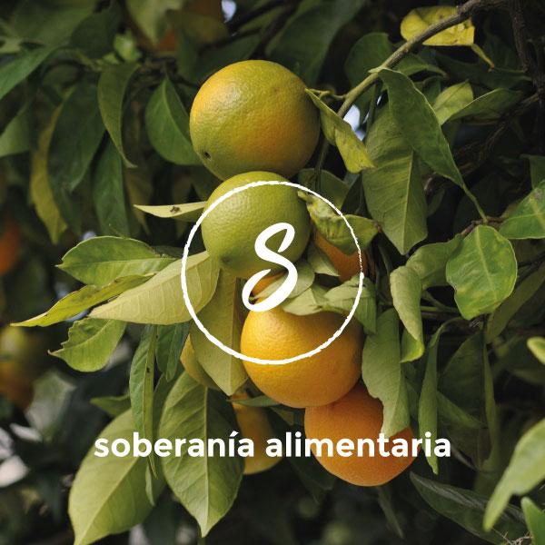 soberania_alimentaria1b